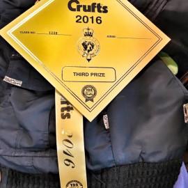Cruft's 2016
